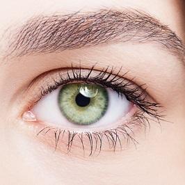 Retina Evaluation